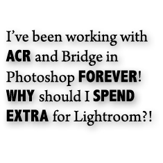 camera raw and bridge are not as good as lightroom on its own